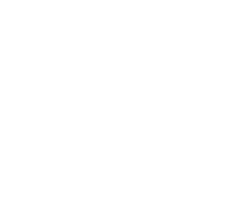 Pizza Olive